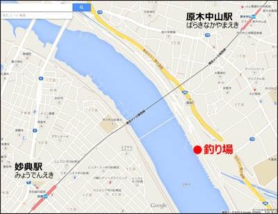 江戸川 放 水路 ハゼ 2019