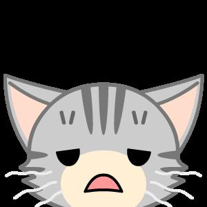 嘔吐 透明 猫