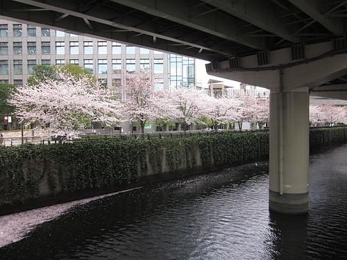 飯田橋 区 4 千代田 2 18 都 東京