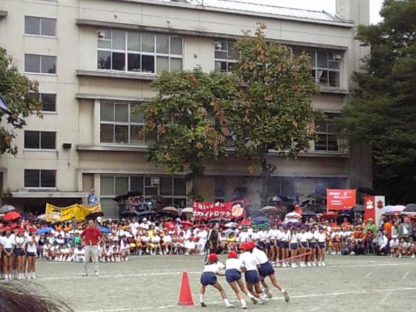 筑波 大学 附属 小学校