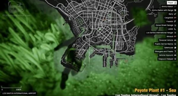 サボテン グラセフ 5 GTA繧ェ繝ウ繝ゥ繧、繝ウ 繧オ繝懊ユ繝ウ