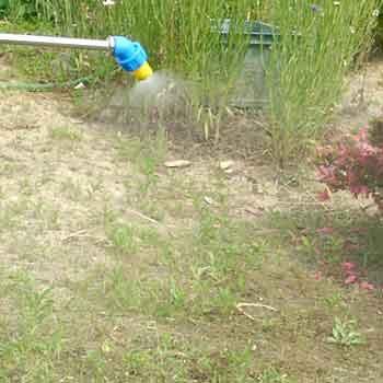 よく 効く 除草 剤
