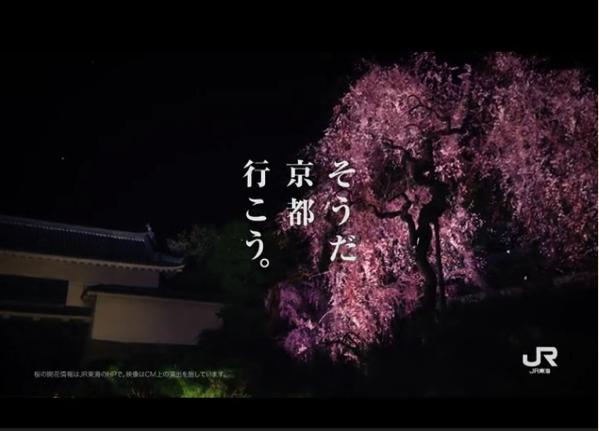 動画 画像】「そうだ京都行こう2017年 春」は二条城です : 京都 ...