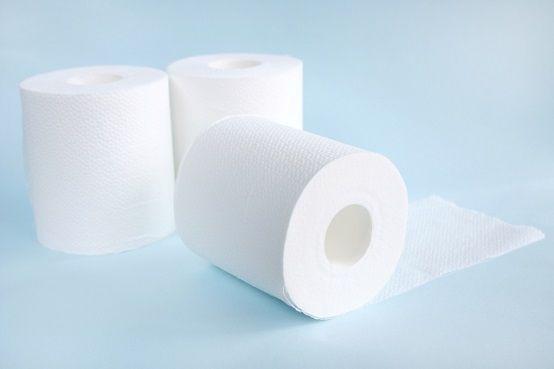 女さん、トイレットペーパーを使いトイレで高難易度な行為に及ぶwwwww