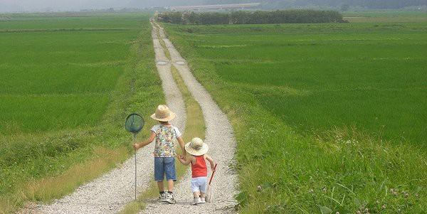 【緊急悲報】今年の夏は、もう二度と来ない『平成最後の夏』となります。