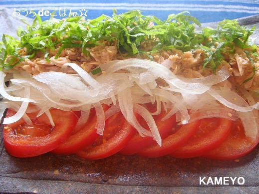 新玉ねぎとトマトのツナドレさらだ 簡単 おいしい かめ代のおうちでごはん Powered By ライブドアブログ