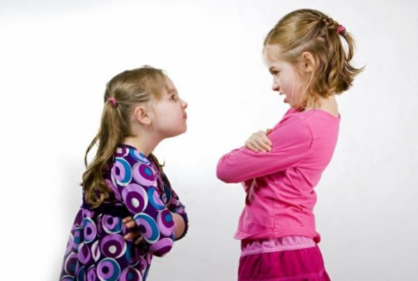 11歳と8歳の姉妹喧嘩が絶えないです 自分も妻も兄弟喧嘩をしたことがなくてどうしていいかわからず状態です