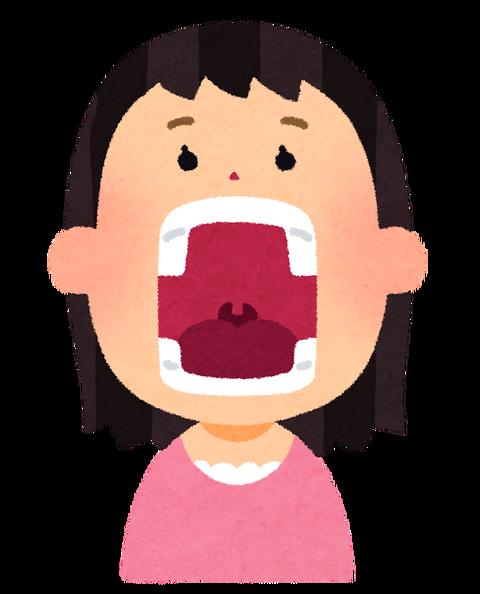 口 の 中 に 血豆 が できる