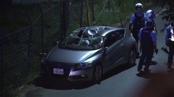 【不運】倒木が車を直撃、運転していた男性死亡 熊本