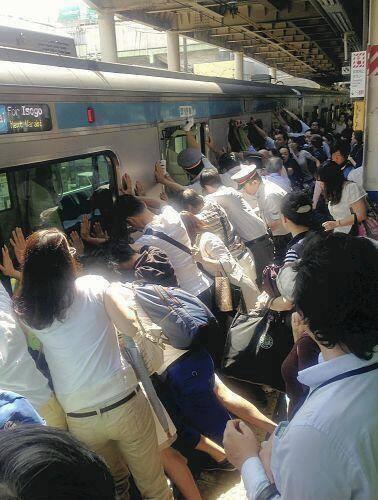 反応 日本 海外 感動 の