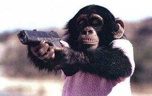 チンパンジー 狂暴