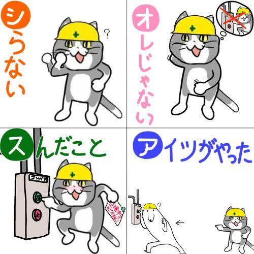 現場猫とかいう猫wwwwwww  なんJまとめ草不可避www