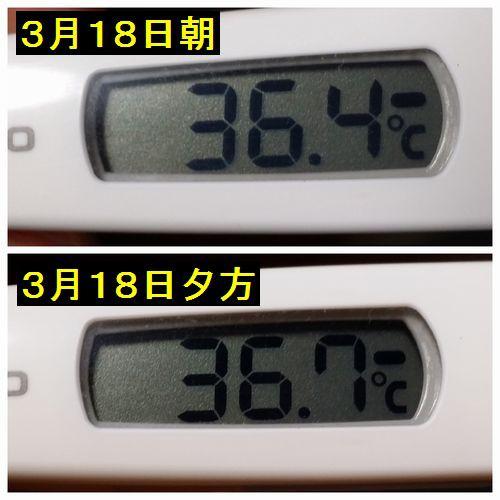 が 朝 低い 体温 早朝に基礎体温を測ると低いのでしょうか?正しい測り方とは