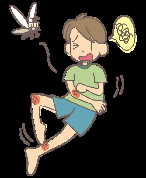 特徴 刺され 蚊 人 に やすい の