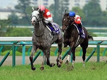 ●【急募】25代二冠馬ゴールドシップさんが種牡馬として覇権をとる方法