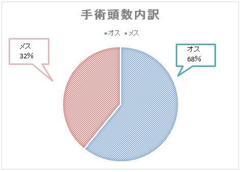 奈良県多頭飼育崩壊現場 出張手術実施報告 : (公財)どうぶつ基金 ...