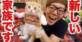 【悲報】ヒカキンさん、猫を飼っただけで1億稼いでしまうwwwwwwwwwwwwwwwwww