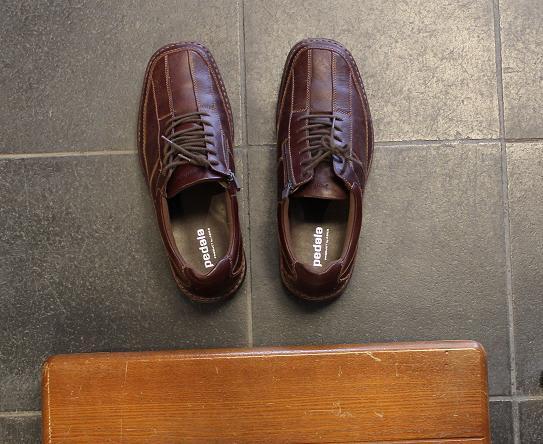 ポンコツ新人おもてなし係は靴の並べ方も知りません
