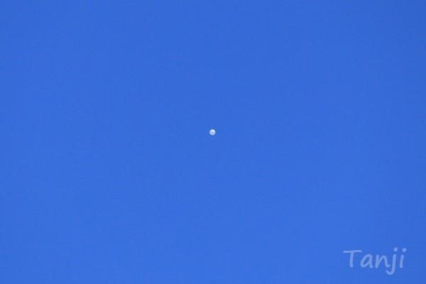 市 上空 白い 物体 仙台 【特定?】仙台上空に未確認飛行物体!謎の白い物体の正体は何?