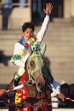 タマツバキ記念 第71回 名古屋杯 : アーカイブ