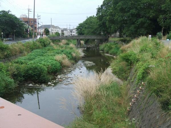 箕面川 : 歩きを楽しむ